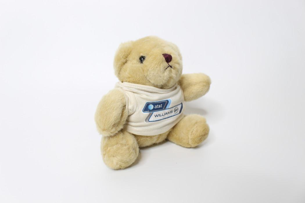 Brown teddy bear (at&t Williams) (2)