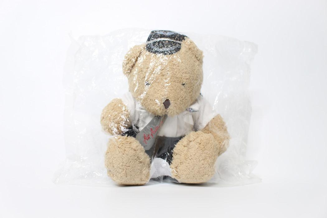 Brown teddy bear (pilot uniform)