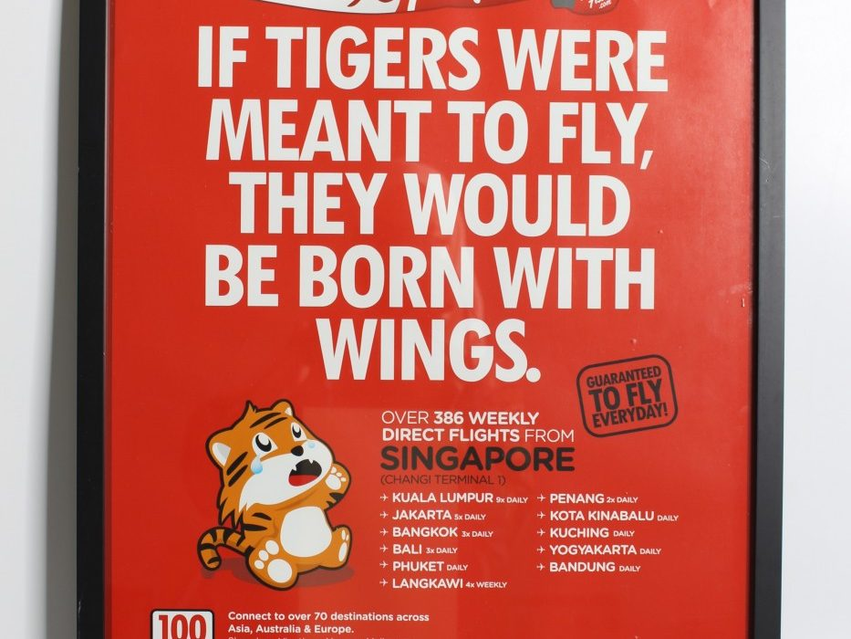 If-Tigers-Were-Meant-To-Fly-They-Would-Be-Born-With-Wings