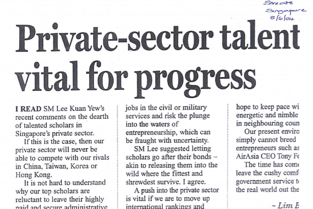 Private-sector talent vital for progress (2)